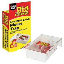 Mouse Trap - Big Cheese Live