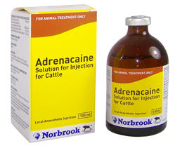 Adrenacaine Solution for Injection of Cattle