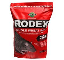 Rodex Whole Wheat